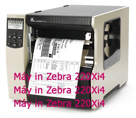 Máy in Zebra 220Xi4 giá rẻ tại Đà Lạt nên mua