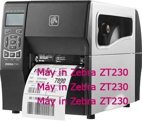 Máy in Zebra ZT 230 giá sỉ đem ra bán lẻ